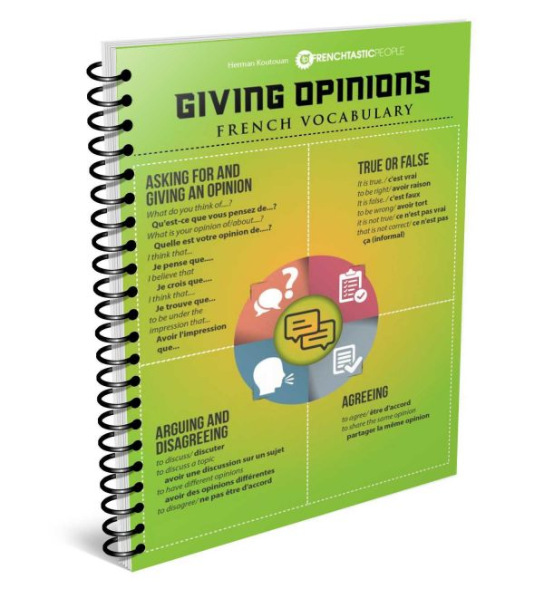 giving-your-opinions-french-infographic